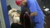 Gatto morde il veterinario che fa iniezione all'amico cane