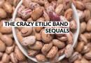 THE CRAZY ETILIC BAND - Sequals