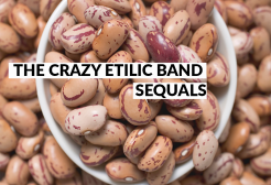 THE CRAZY ETILIC BAND - Sequals
