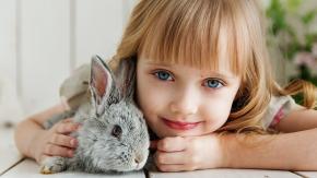 Curioso come… un coniglio!