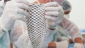 Donna Transgender diventa la prima al mondo a ricevere una vagina realizzata con pelle di pesce!