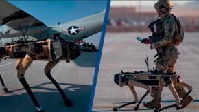 L'esercito americano schiera cani robot a guardia della base aeronautica