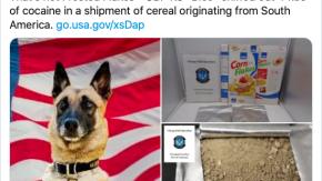 Sequestrati 20kg di cornflakes alla cocaina
