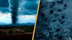 Arriva il trailer di Arachnado, il film su un tornado pieno di ragni!