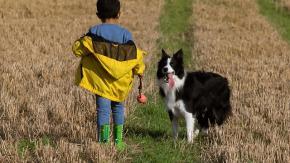 """Bambini e cuccioli: istruzioni per """"l'uso"""""""