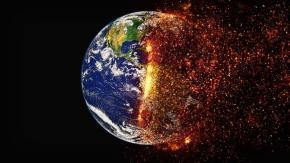 Nel 2050 rischiamo l'estinzione