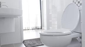 Questa toilette intelligente ti riconoscerà in base alla forma del tuo orifizio