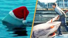 Santa Jaws: un film dove uno squalo assassino indossa un cappello natalizio