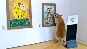 Coppia in quarantena crea una galleria d'arte in miniatura per i loro gerbilli
