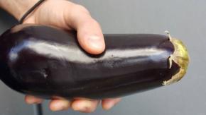 """Uno studio rivela la """"miglior dimensione del pene"""" per provocare un orgasmo femminile"""