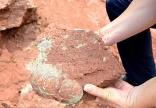 C. A questepoca risale una raccolta di testi religiosi e mitologici, rinvenuta a Ebla.